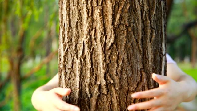Huging einem Baum – Video