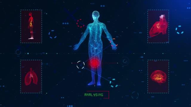 4K Human body medical Scan (Loopable)
