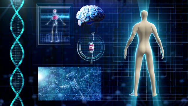 Human body medical Scan video