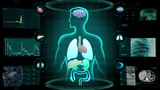 Human body medical x-ray scan video