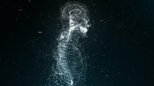human body 4k seamless loop the human body stock videos & royalty-free footage