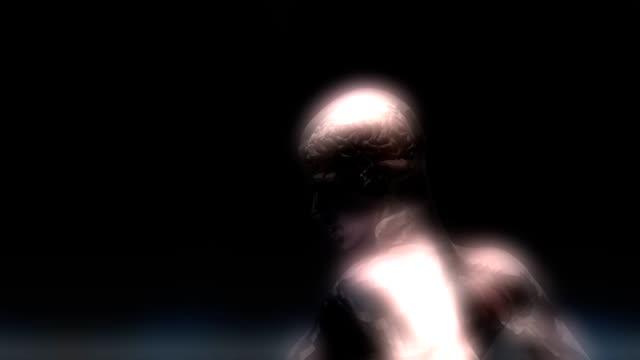 Animation du cerveau humain - Vidéo