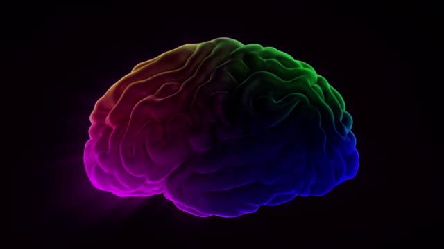 vídeos de stock e filmes b-roll de human brain loop - sistema nervoso humano