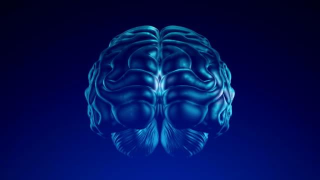 人間の脳 - 単発 (アルファ チャネル) - 4 K ビデオ