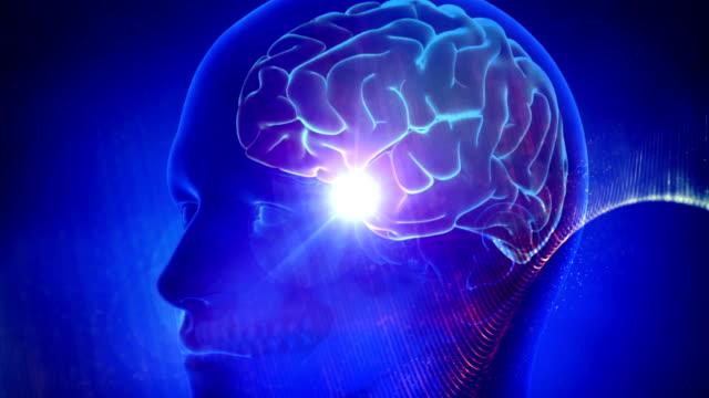 menschliches gehirn medizinischer cyber-hintergrund - wachsamkeit stock-videos und b-roll-filmmaterial