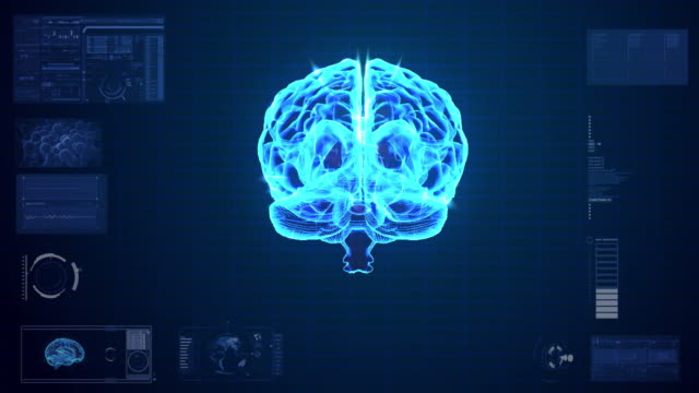 Human Brain neuron Scan animation video