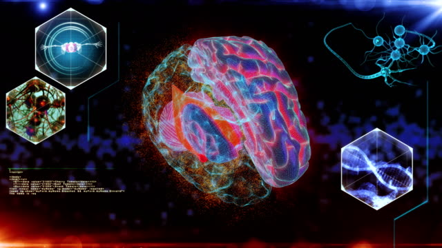 Human Brain neuron Scan
