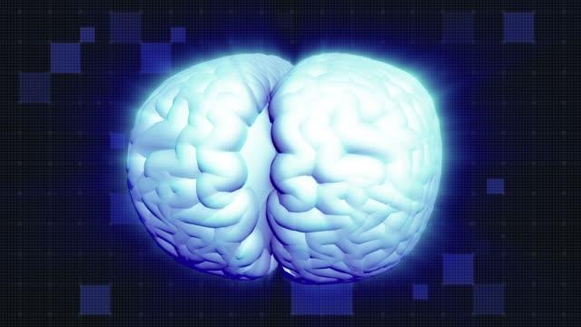 Human brain rotation, shine effect. Light blue aura. Full HD deep blue background Shining Brain Aura. Full HD medical GUI. Seamless looping cerebellum stock videos & royalty-free footage