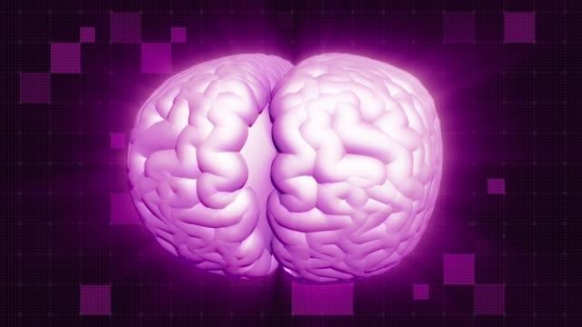Human brain rotation, shine effect. Magenta aura. Full HD deep red background Shining Brain Aura. Full HD medical GUI. Seamless looping cerebellum stock videos & royalty-free footage