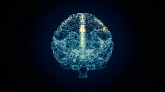 Human Brain Scan Human Brain Scan Abstract cerebellum stock videos & royalty-free footage