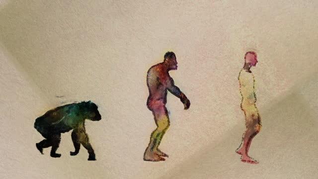 menschliche evolution hauptstufen timeline malerei stil nahtlose schleife - fortschritt stock-videos und b-roll-filmmaterial