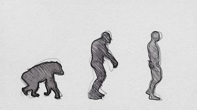 vídeos de stock e filmes b-roll de human evolution timeline walking in pencil sketch seamless loop - evolução
