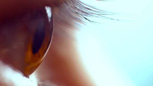 Human Eye Close-up Human Eye Close-up eyesight stock videos & royalty-free footage