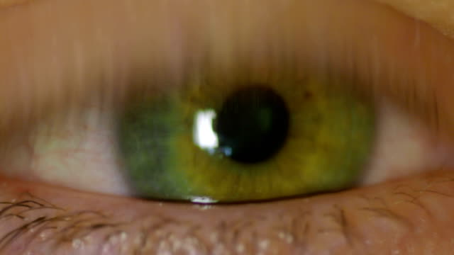 Human Eye Pupil Constriction in Response to Light video