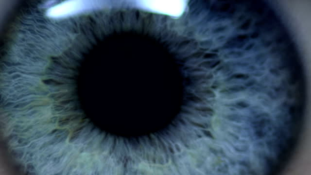 Human eye Selected Takes - Shot on RED Epic eyesight stock videos & royalty-free footage