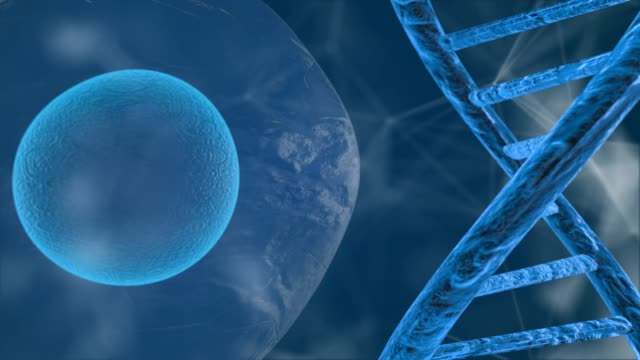 Human genome mapping research of human DNA and genes molecular chemistry 3D render video