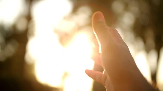 mano umana e sole luce - avvicinarsi video stock e b–roll