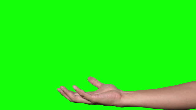 human hand on green background. - palm of hand stock videos & royalty-free footage