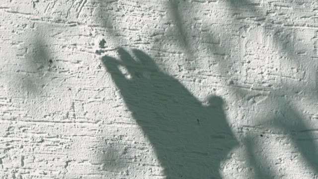 human hand shadow on white wall background - penombra video stock e b–roll