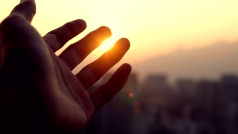 mano umana che tocca la luce del sole - alba crepuscolo video stock e b–roll