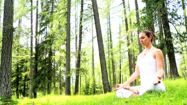 Human Harmony and Balance in Nature video