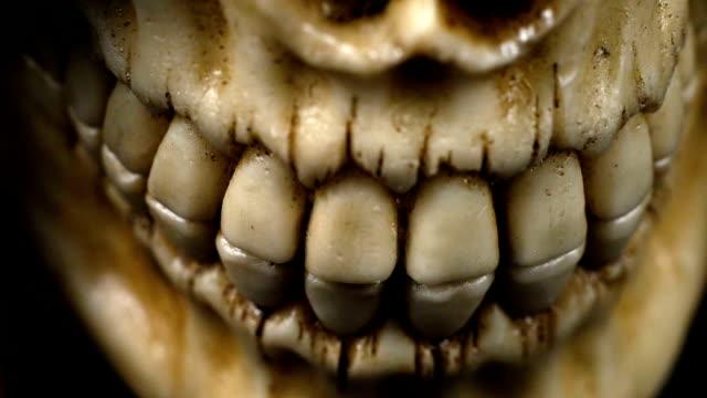 human jaw - cadavere video stock e b–roll