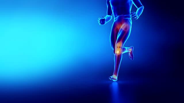 vídeos de stock, filmes e b-roll de homem de esporte de homem correndo do joelho humano - articulação humana