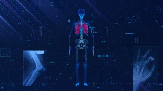 4K Human lung medical Scan (Loopable) USA, The Human Body, Flat Bed Scanner, People, Anatomy, Lung lung stock videos & royalty-free footage