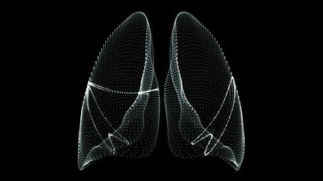 human lungs breathing in a hologram representation screen 3d - loop - torace umano video stock e b–roll