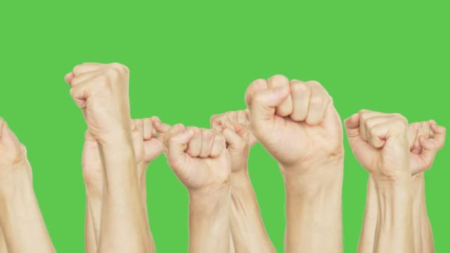 Human moving up clenched fist on meeting isolated on green background. Gestures hand fist up on green chroma key background. Alpha channel, keyed green screen.