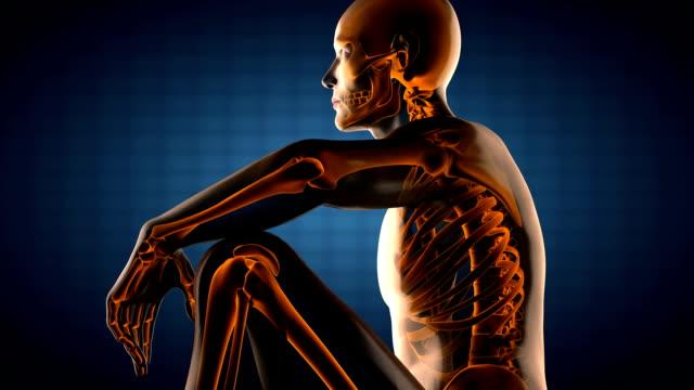 human radiography scan video