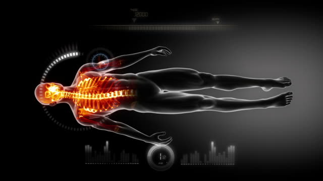 Human skeleton medical scan video