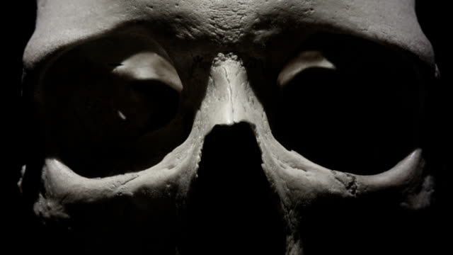 human skull: light sweeps past eye sockets in close up. spooky and sinister. - morte video stock e b–roll