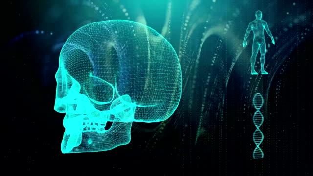 человеческий череп медицинского фона - white background стоковые видео и кадры b-roll