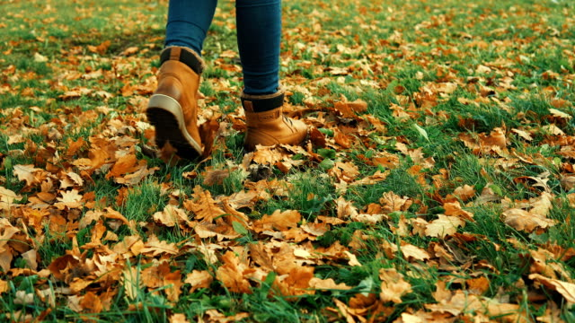 Human wearing brown leather boot and walking in fallen oak leaves.