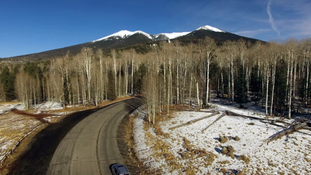 Humphrey's Peak Road National Forest Arizona Southwest United States video