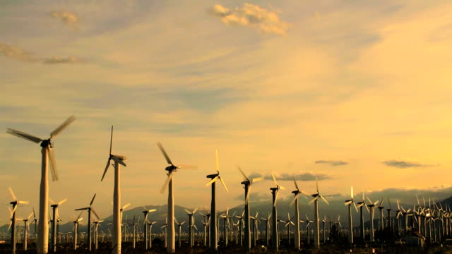 Hundreds of Wind Turbines at sunset - HD video