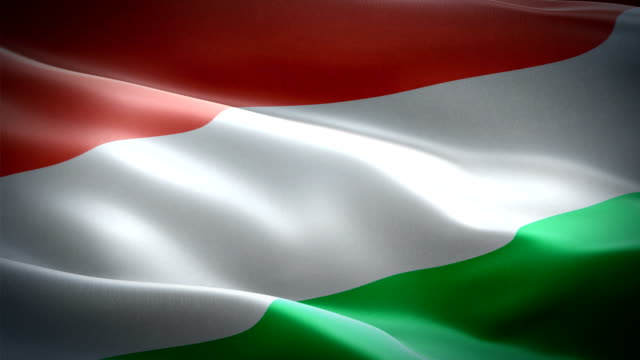 Hungary waving flag. National 3d Hungarian flag waving. Sign of Hungary seamless loop animation. Hungarian flag HD resolution Background. Hungary flag Closeup 1080p Full HD video for presentation Hungary waving flag. National 3d Hungarian flag waving. Sign of Hungary seamless loop animation. Hungarian flag HD resolution Background. Hungary flag Closeup 1080p Full HD video for presentation hungary stock videos & royalty-free footage