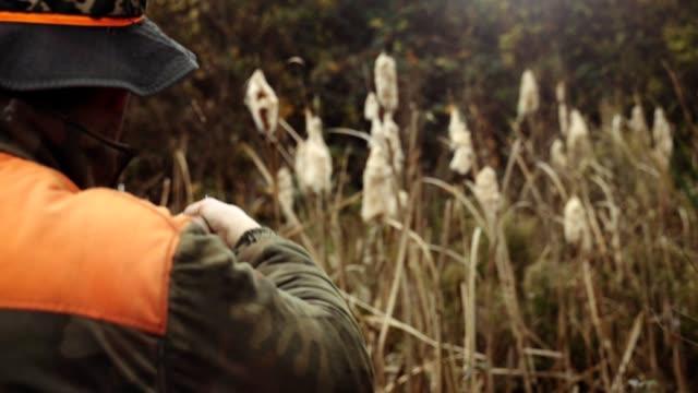 Hunter in the ambush stock video