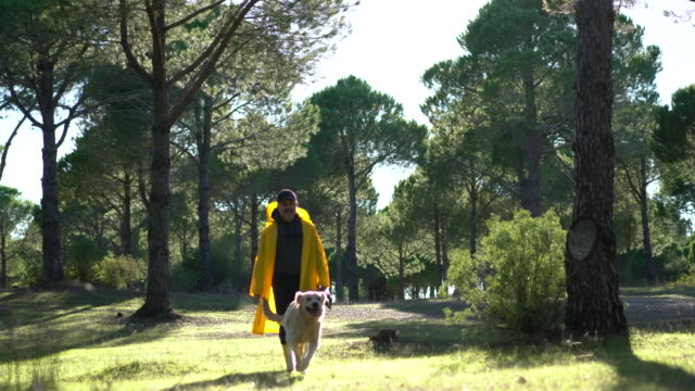 Hunter Man walking with his dog and gun in forest