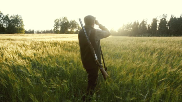 Hunter rises binoculars at golden hour (slow motion)