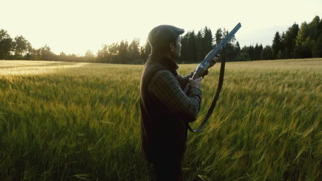 Hunter shoots a weapon at golden hour video