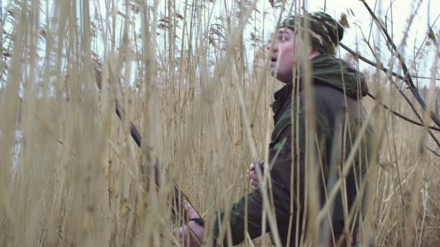 vidéos et rushes de chasseur - chasser
