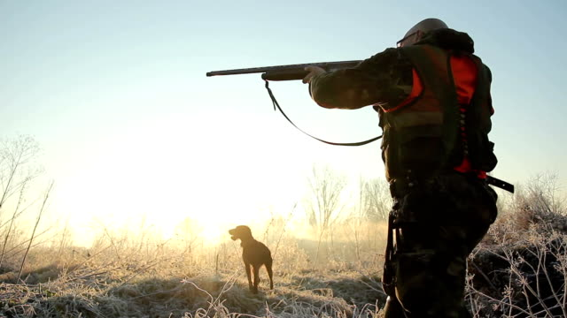 hunter - hunting stock videos and b-roll footage