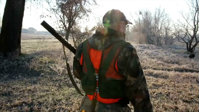 hunter walk through the field - hunting stock videos and b-roll footage