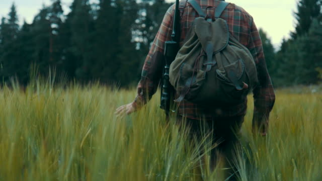 hunter walking on a field (slow motion) - cacciatore video stock e b–roll