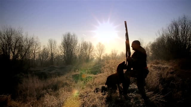 Hunter with his dog,sunrise ambient Hunter with his dog,sunrise ambient purebred dog stock videos & royalty-free footage