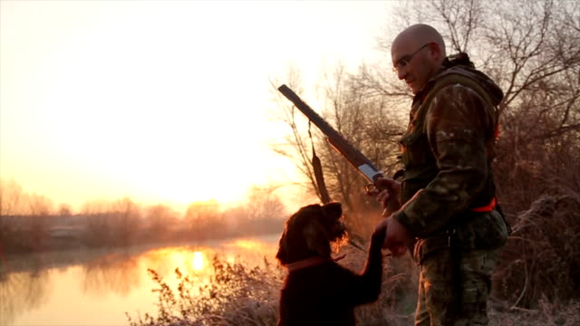 hunter with his german wirehaired pointer - hunting stock videos and b-roll footage