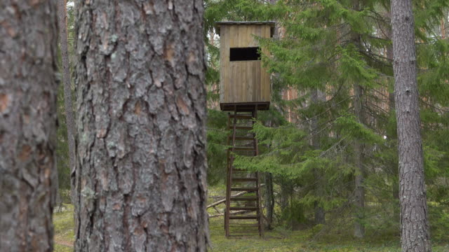 Hunters hut in the forest. Hunter tower or watch post in the wilderness. Elevated wooden structure