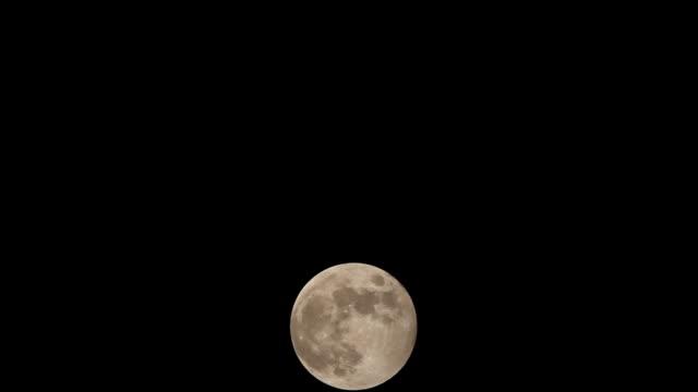Hunter's Moonrise video